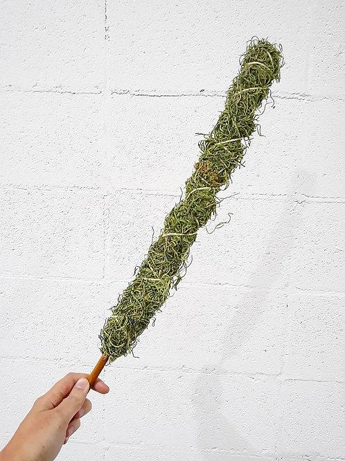 Medium Moss Pole
