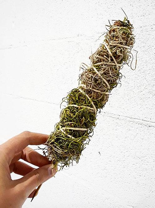 Small Moss Pole