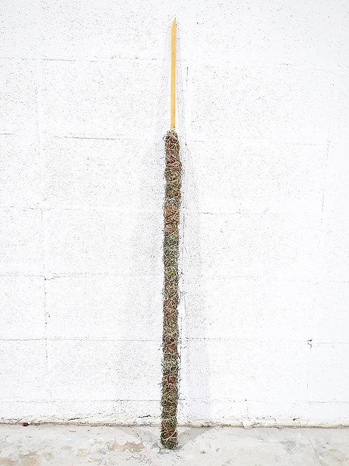 XL Moss Pole