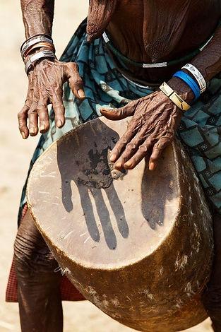 La musca dell' Africa Sub Sahariana