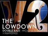 double bass, upright bass instrument