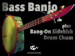 Bass Banjo_boxtop_800x600.jpg