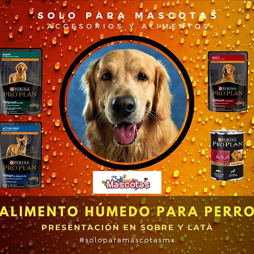 Alimento húmedo para perro
