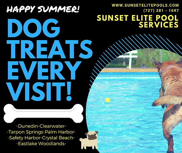 Sunst Elite Pool Services