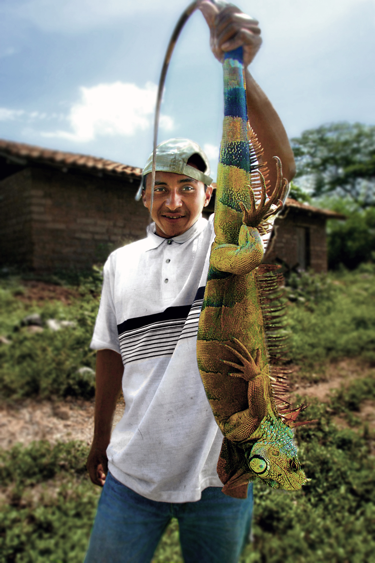 Boy selling iguanas in Honduras