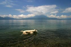 Wipeout, Lake Atitlan