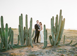 Aruba Cactus Wedding