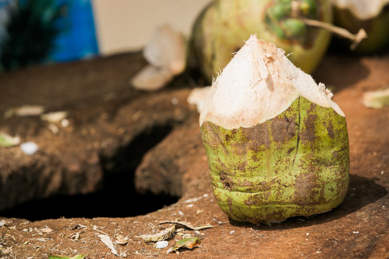 Coco in Aruba