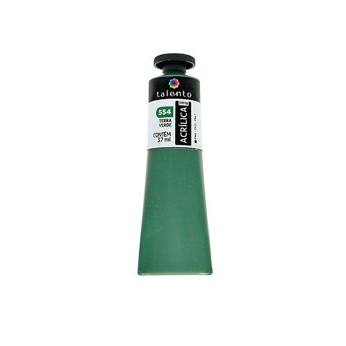 Tinta P/Tela 554 - Terra Verde 37ml