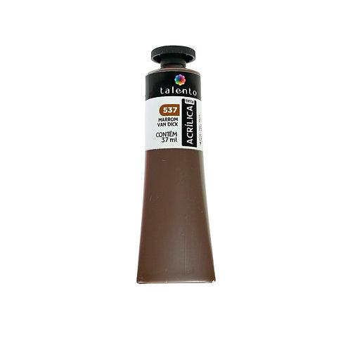 Tinta P/Tela 537 - Marrom Van Dick 37ml