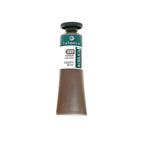 Tinta P/Tela 537 - Marrom Van Dick 20ml