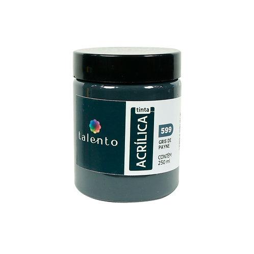 Tinta P/Tela 599 - Gris de Payne 250ml