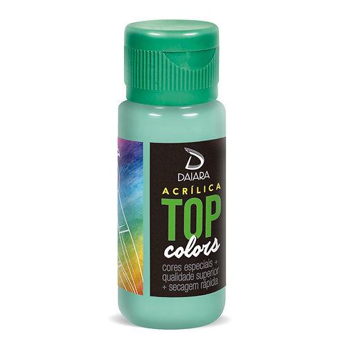 Tinta Acrílica Top Colors 60ml - 69 Verde Antigo