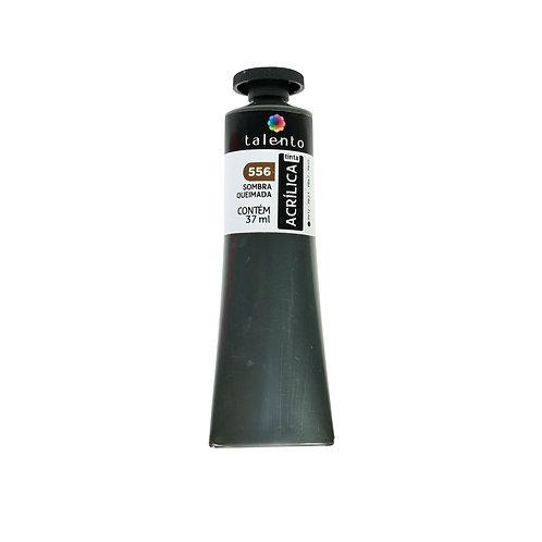 Tinta P/Tela 556 - Sombra Queimada 37ml