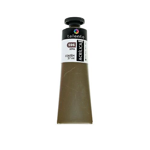 Tinta P/Tela 596 - Sépia 20ml