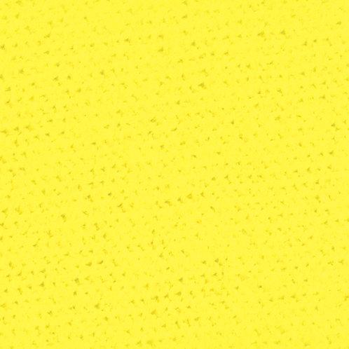 Tinta para Tecido 37ml - 06 Amarelo Canário