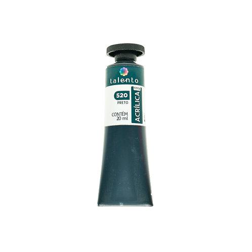 Tinta P/Tela 520 - Preto  20ml