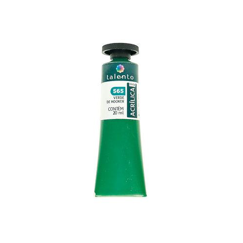 Tinta P/Tela 565 - Verde de Hooker 20ml