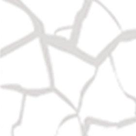 Kit Craquelê Transparante 40ml - 21 Branco