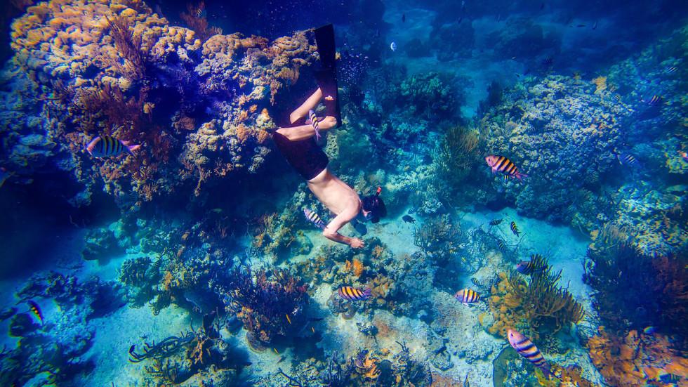 Fowl Cays - Activities