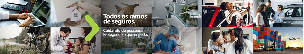 HEAD site novo TODOS RAMOS 001.png
