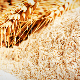 Wheat feed