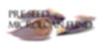 Pre Seed Loan Fund Logo.png