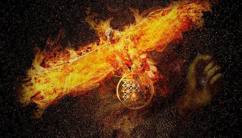 phoenix-3424275_1920.jpg