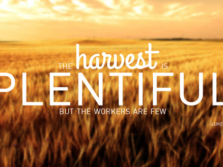 """The bible tells us – """"The harvest is plentiful but the laborers are few."""""""