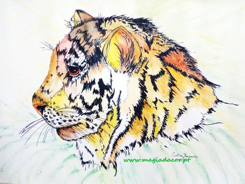 Tigrinho