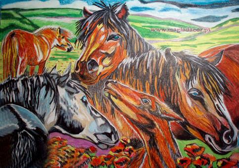 Cavalos no Pasto