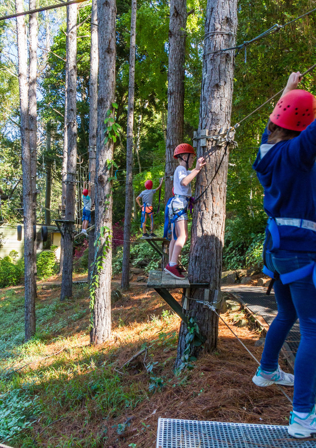 High Ropes 4