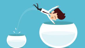 Comment réussir l'épreuve de la transition professionnelle?