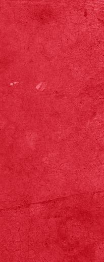 Practice Goals Sheet - Red