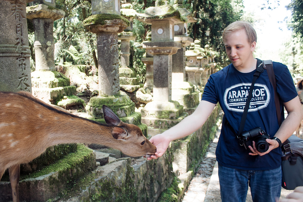 Man holding a camera reaches his hand out to a deer who is sniffing his hand, in a Japanese zen garden