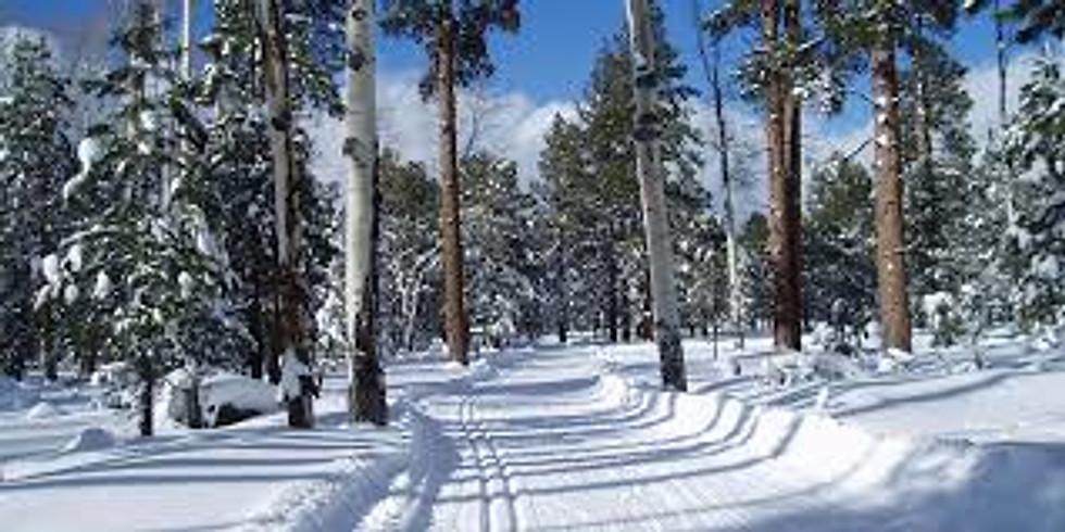 Winter Wonderland Yoga Escape