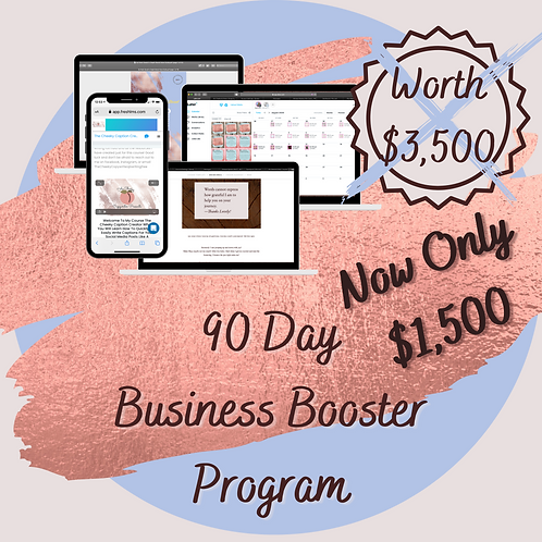 90 Day Business Booster Program