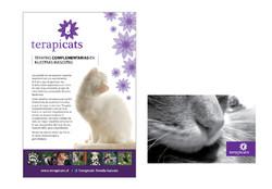 Terapicats-08.jpg