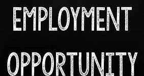 48694791-employment-opportunity.jpg
