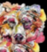 IMG-20190127-WA0002-cutout.png