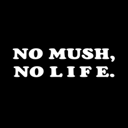 NOMUSH,NOLIFE.白(向き垂直)
