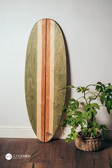 Turtle long - לונגבורד