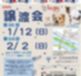 譲渡会チラシ1月・2月.jpg