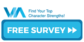Take VIA Survey button.png
