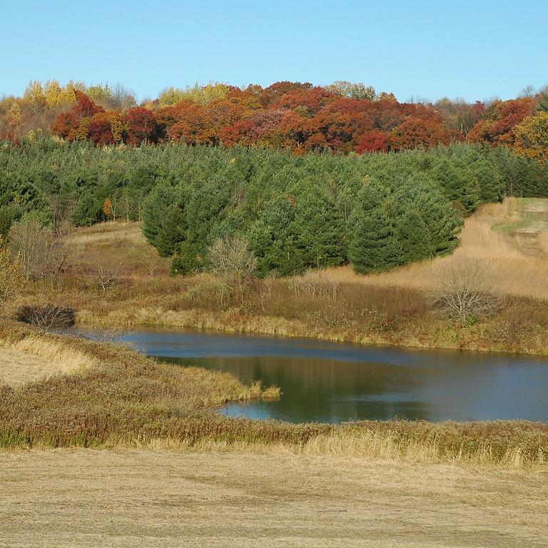 Tree Farm Field Day 2021