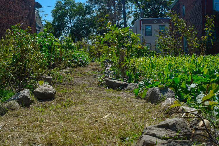 OneArt - Green Spaces_3.jpg