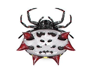 Spiny Orbweaver Spider.jpg