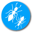 Ants2.png