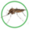 NEW Mosquito Icon.png