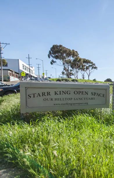 starr king open space potrero